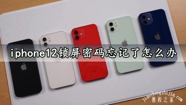 iphone12锁屏密码忘记了怎么办 (苹果12如何找回密码)
