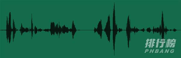 荣耀EarBuds2SE售价(价格多少钱)